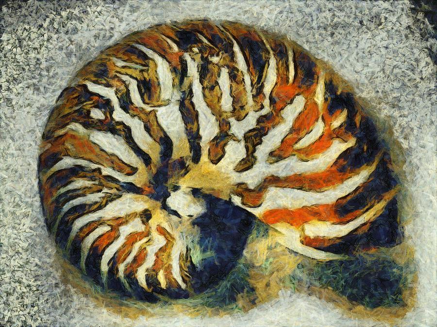 Nautilus Digital Art - Nautilus by Labron Jacobs
