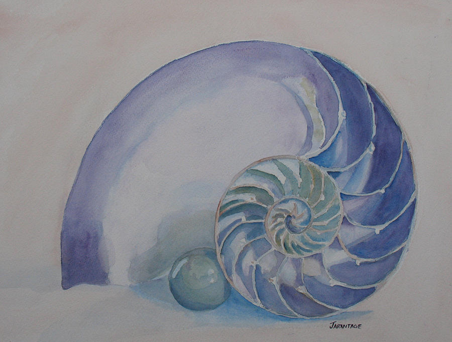 Nautilus Painting - Nautilus With Marble by Jenny Armitage
