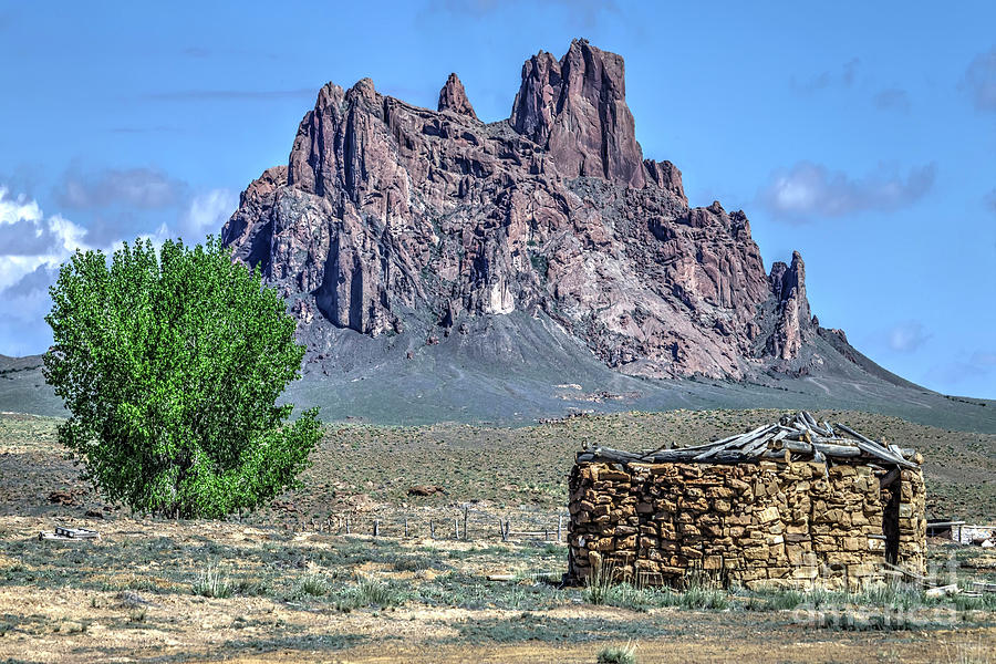 Mountain Photograph - Navajo Hogan by Rick Mann