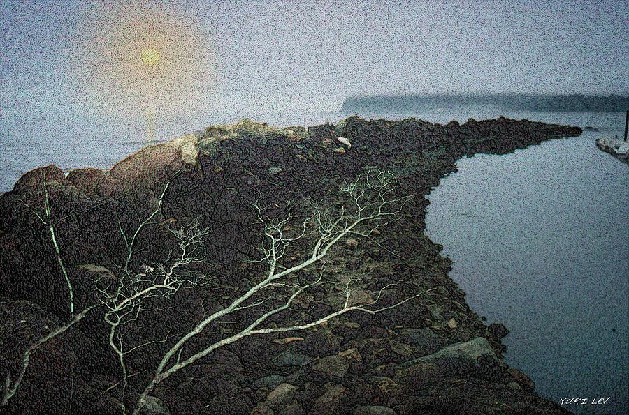 Neah Bay Photograph