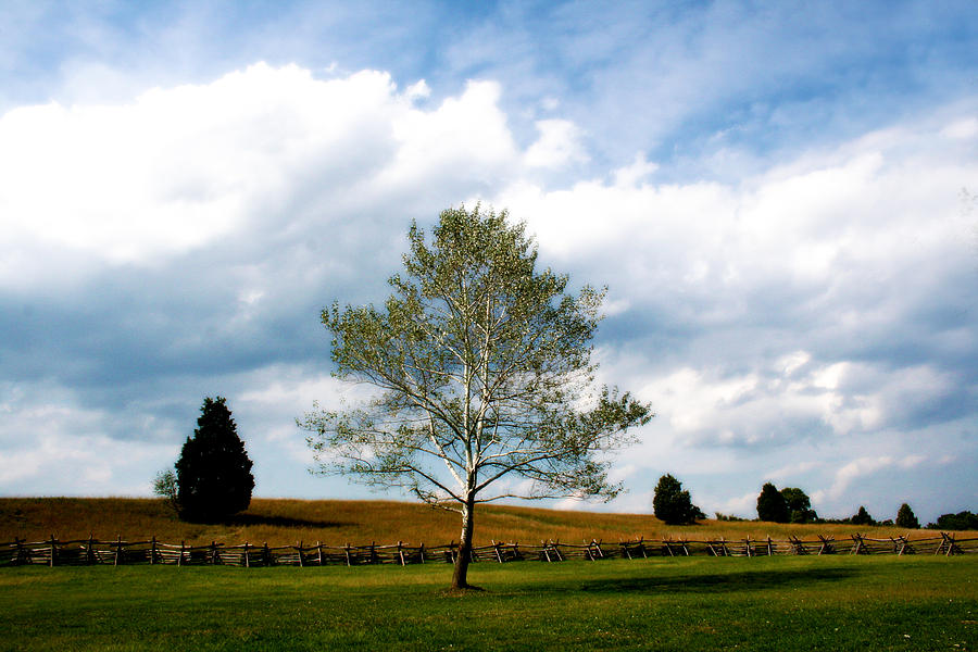 Landscape Photograph - Near The Stone House by Julie Bromley