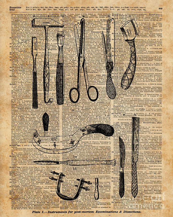 Necropsy Kits,anatomy Medical Instruments,surgery Decoration ...