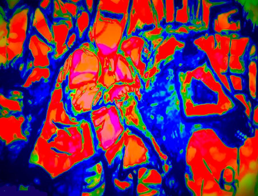 Archispray Digital Art - Ned Kellt Gang Art - Blue Seeya by J Kamaru
