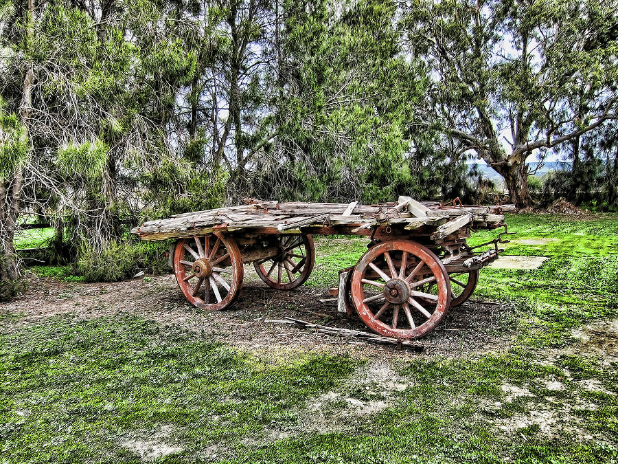 Wagon Photograph - Need Horsepower by Douglas Barnard
