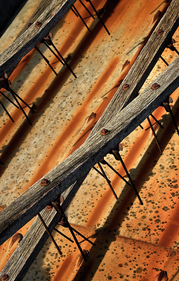 Machine Photograph - Needles And Wood by Murray Bloom