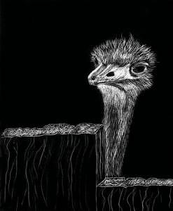 Ostrich Drawing - Neighbors by Elizabeth Jones