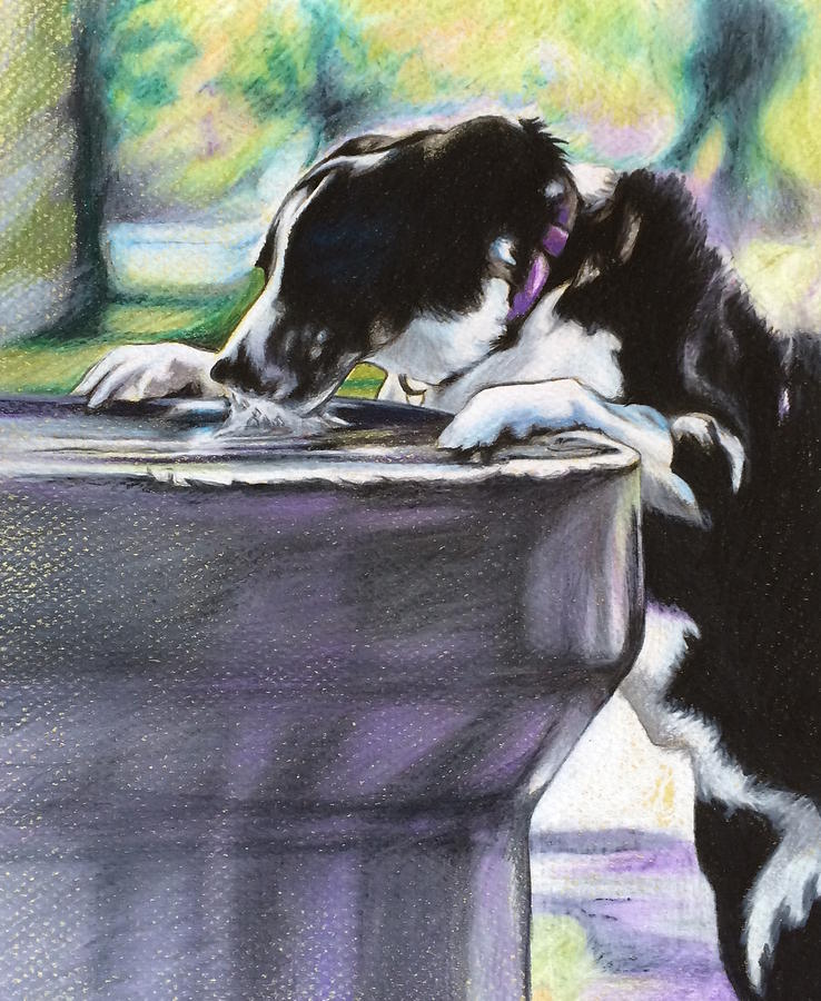 Nellie Drawing by Carol Meckling