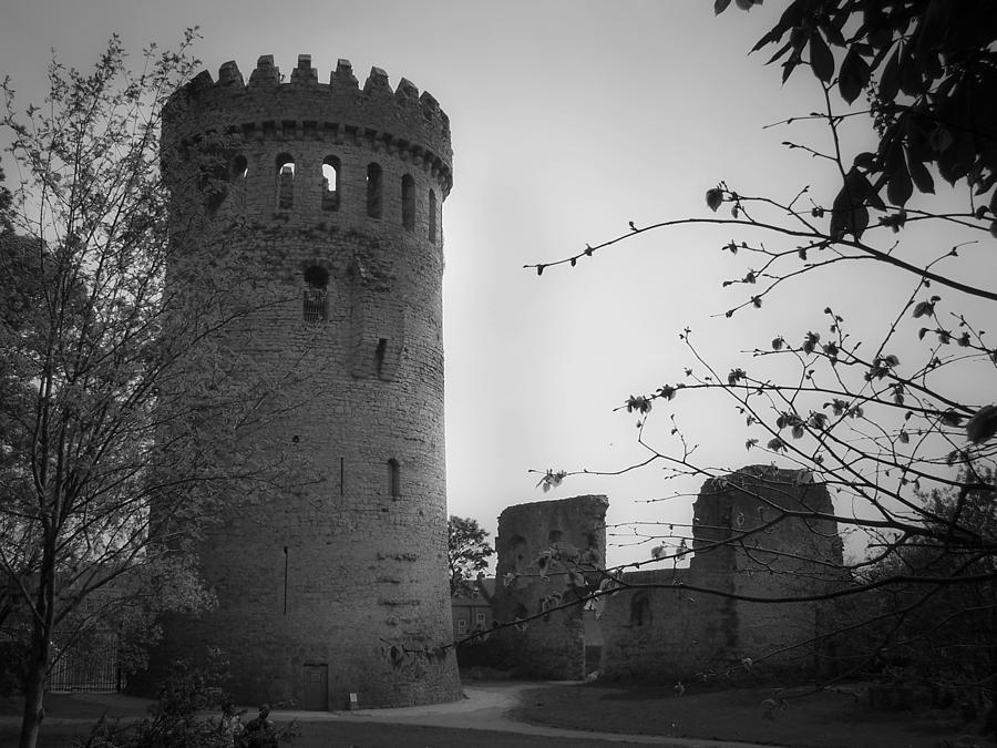 Ireland Photograph - Nenagh Castle County Tipperary Ireland by Teresa Mucha
