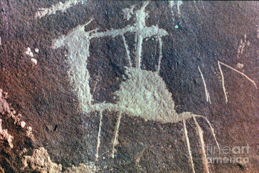 Camel Photograph - Neolithic Petroglyph by Granger