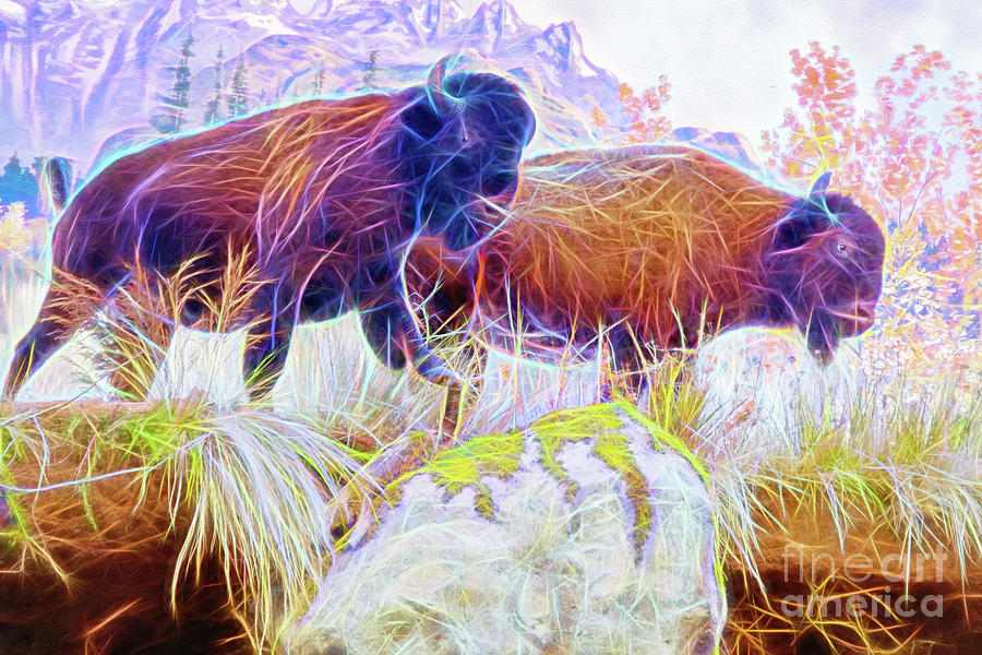 Neon Bison Pair by Ray Shiu
