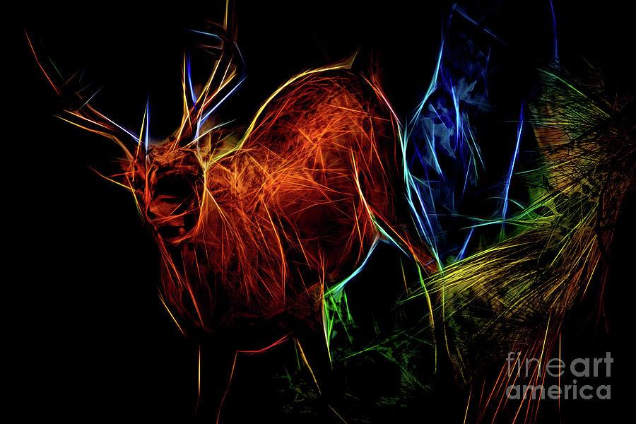 Neon Buck by Ray Shiu