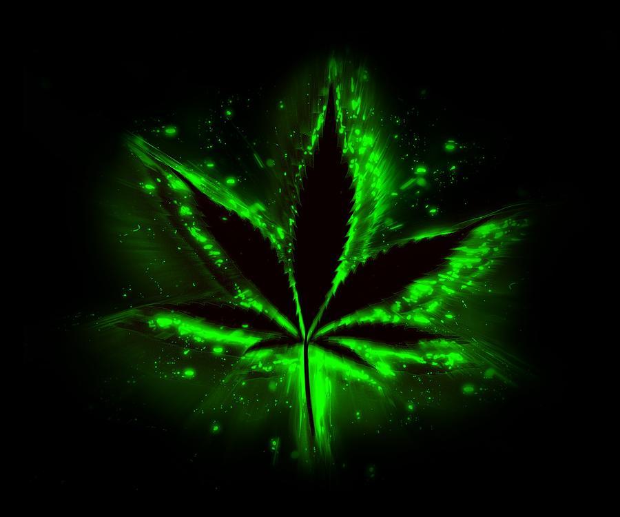 Neon Weed Leaf Art Related Keywords Suggestions Neon Weed Leaf