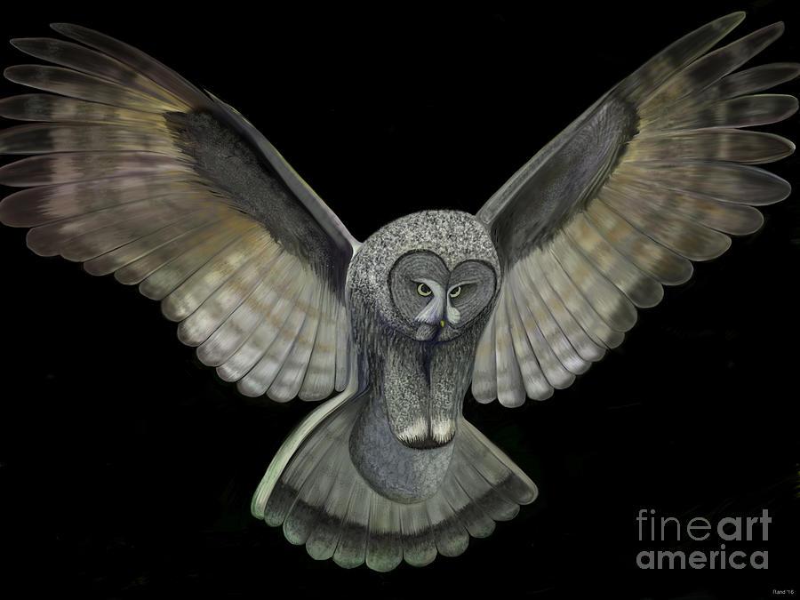 Neon Owl by Rand Herron