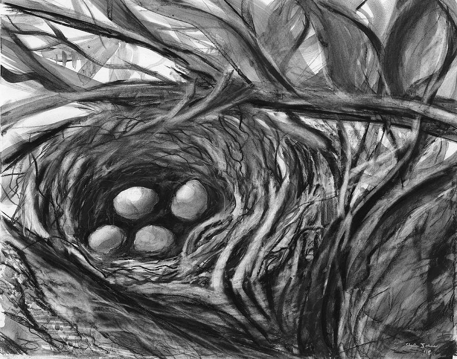 Nesting Eggs by Sheila Johns