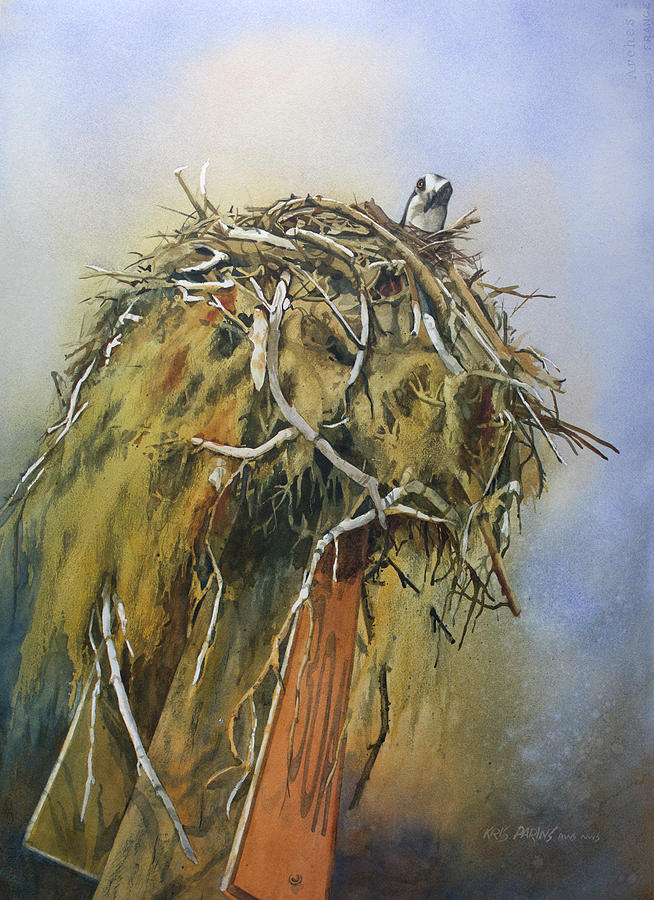 Watercolor Painting - Nesting Osprey by Kris Parins