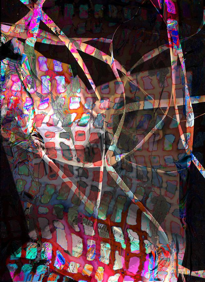 Abstract Digital Art - Net by Dave Kwinter