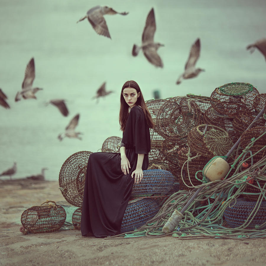 Nets And Seagulls Photograph by Anka Zhuravleva