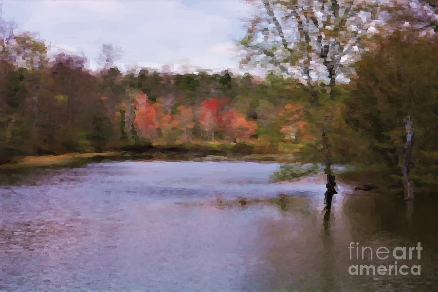 Neuse River At Buffaloe Rd Photograph