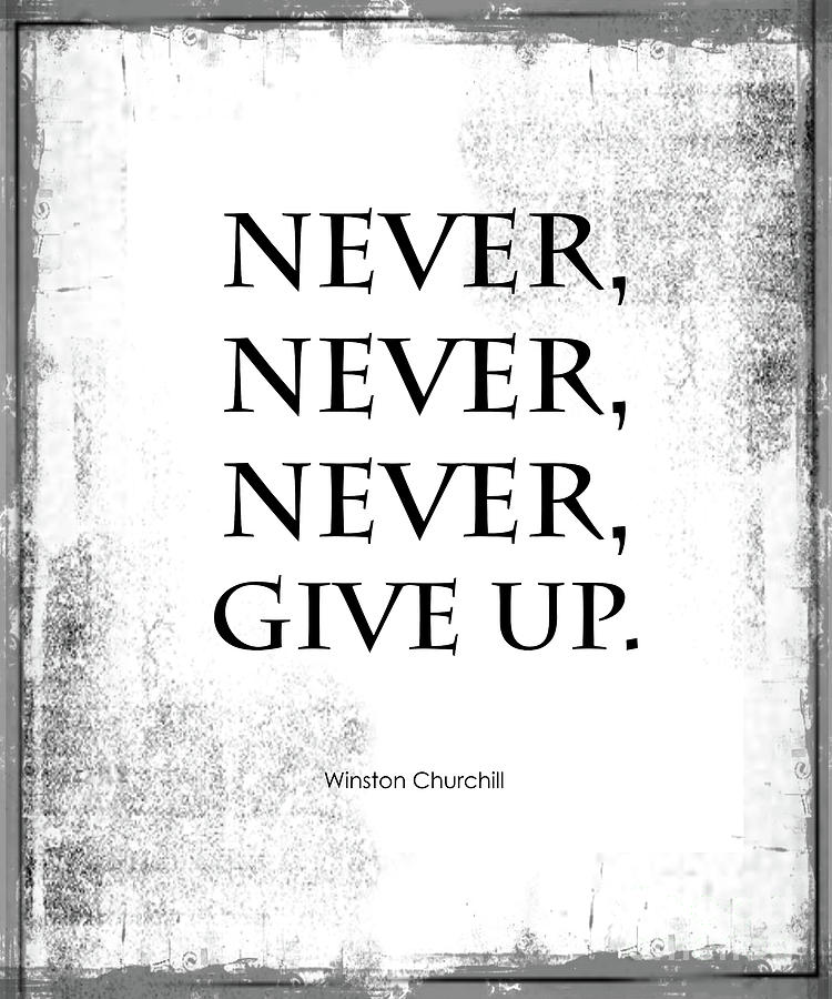 never never never give up quote photograph by kate mckenna
