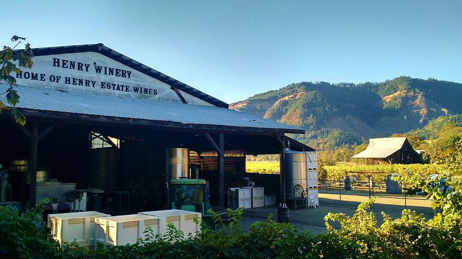 New Barn Old Barn by Liz Snyder