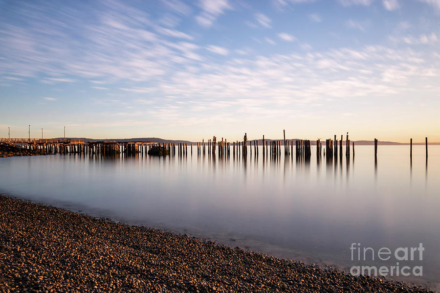 New Day In The Bay by Sal Ahmed