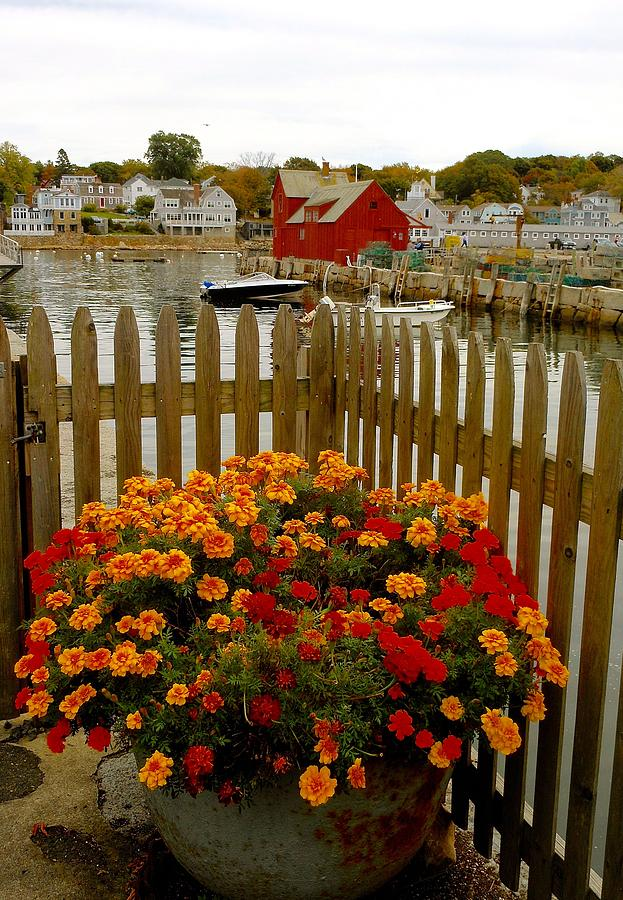 New England Delight by My Lens and Eye - Judy Mullan -