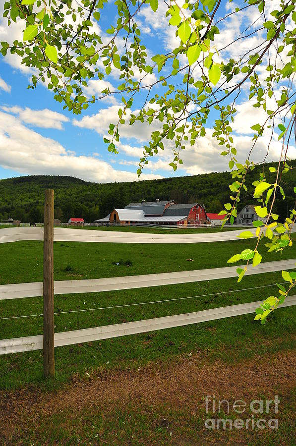 Agriculture Photograph - New England Farm by Catherine Reusch Daley