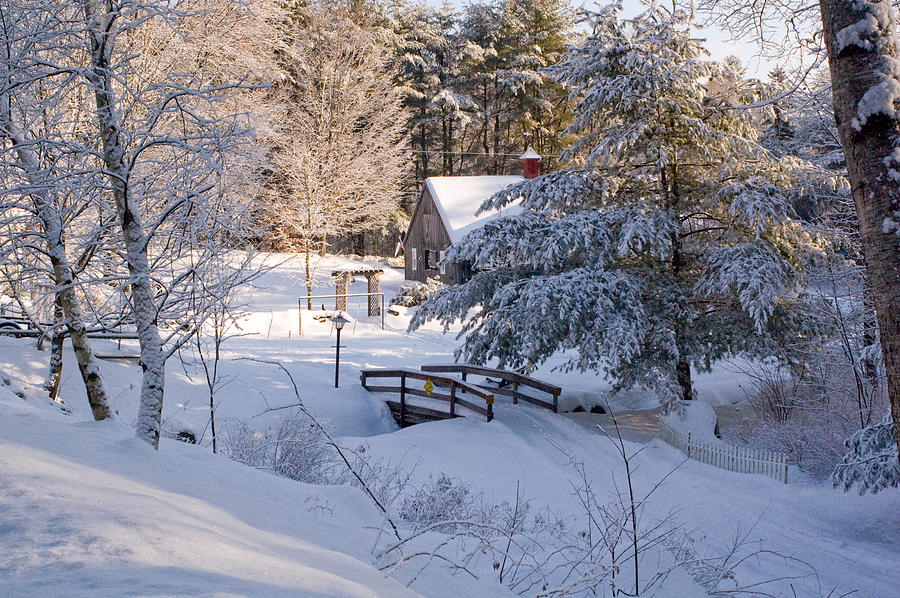 Snow Photograph - New England House And Forest In The Snow by David Thompson