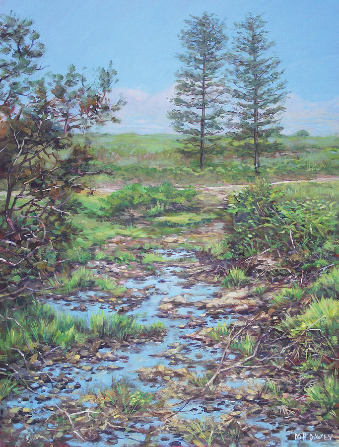 Countryside Painting - New Forest Ditch by Martin Davey