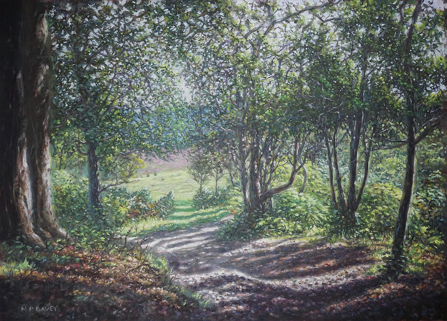 New Forest path in summer evening by Martin Davey