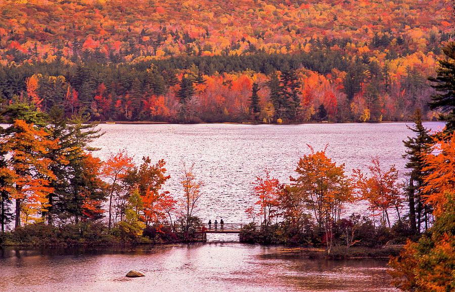 New Hampshire Fall Tapestry - Textile