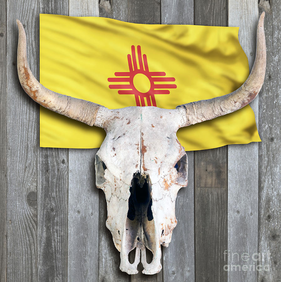 New Mexico Flag And Cow Skull. Photograph by W Scott McGill