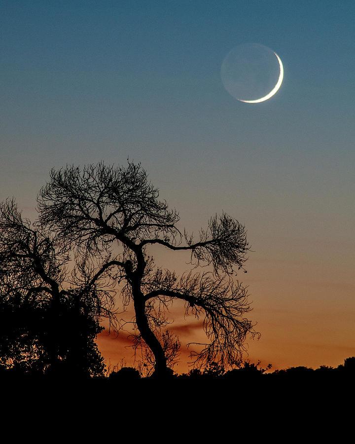 Nature Photograph - New Moon At Beaver Creek, Arizona, I by Dave Wilson