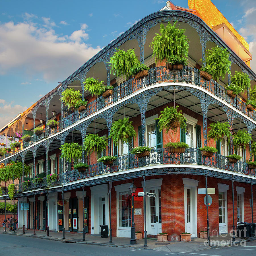 America Photograph - New Orleans House by Inge Johnsson