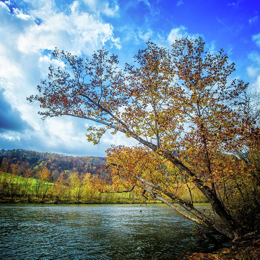 New River in Fall by Joe Shrader