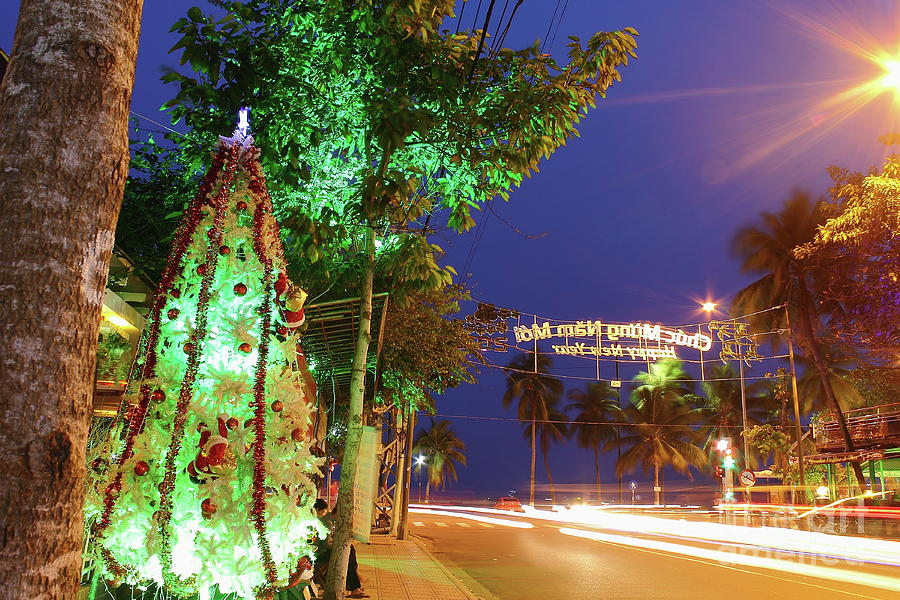New Year In A Tropical Climate On The Coast. Night View. Photograph