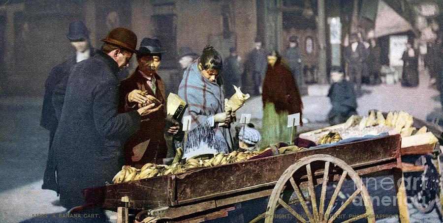 1900 Photograph - New York: Banana Cart by Granger