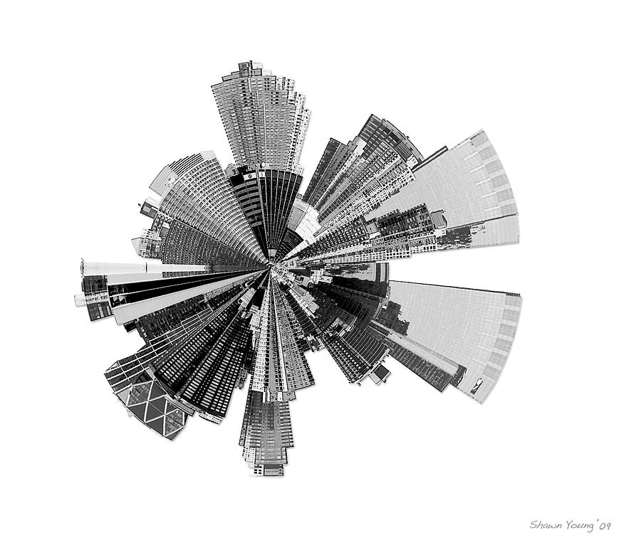 New York City Photograph - New York City Lily by Shawn Young