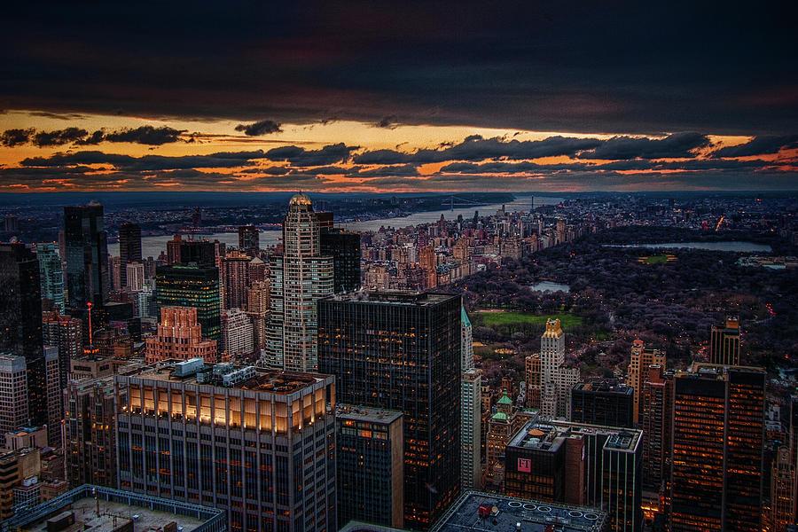 New York Gold by Neil Shapiro