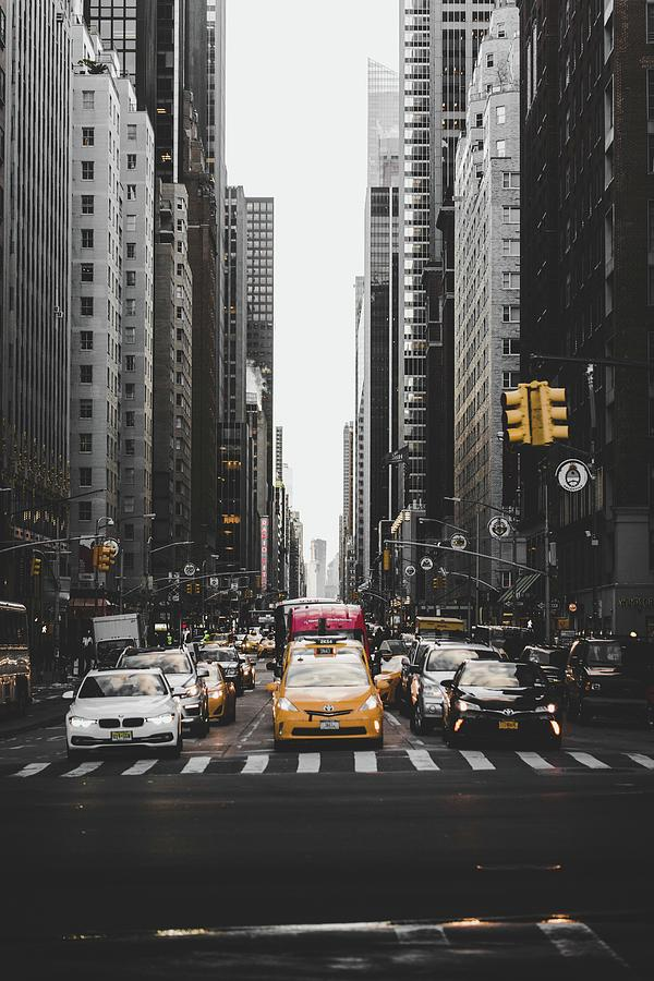 Central Park Photograph - New York by John Arano