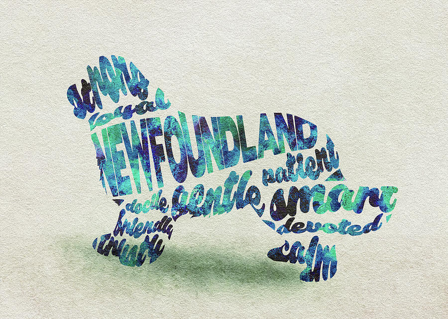 Newfoundland Painting - Newfoundland Dog Watercolor Painting / Typographic Art by Inspirowl Design