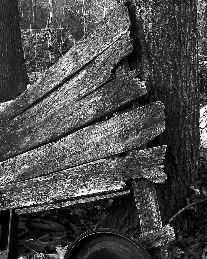 Ansel Adams Photograph - Nextdoorolddoor by Curtis J Neeley Jr