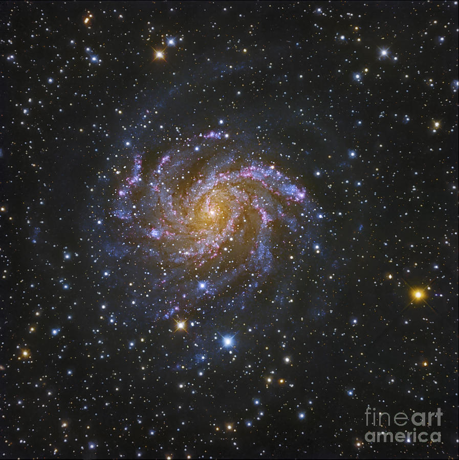 Spiral Galaxy Photograph - Ngc 6946, Also Known As The Fireworks by Robert Gendler