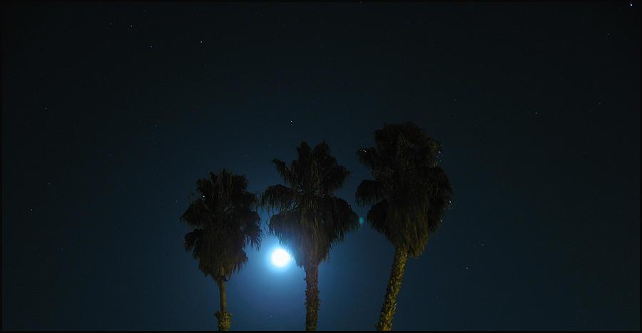 Night Photograph - Night by Ashley Cauvel