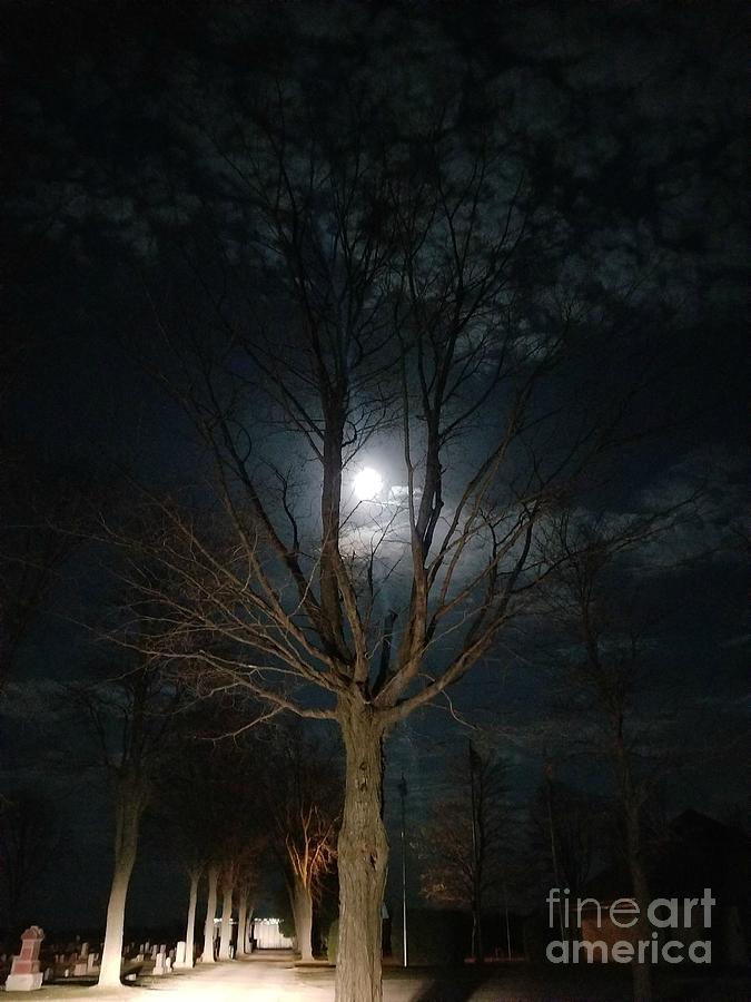 Night At The Graveyard by Diamante Lavendar