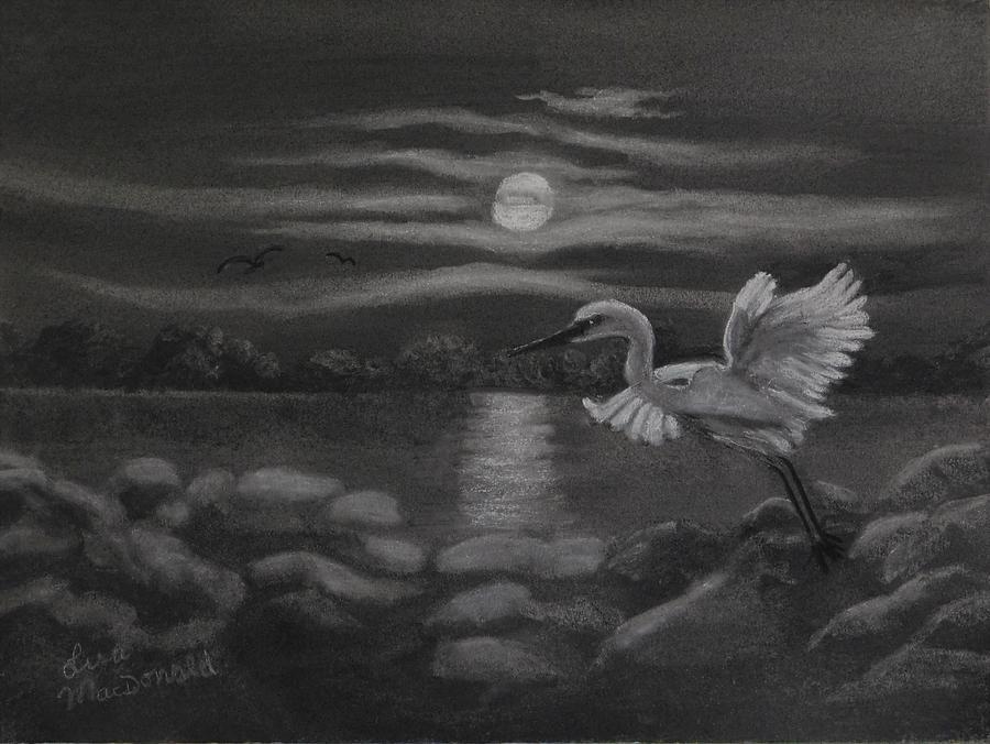 Landscape Drawing - Night Flight by Lisa MacDonald