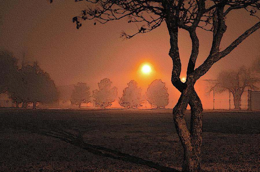 Tree Photograph - Night Fog by Betty LaRue