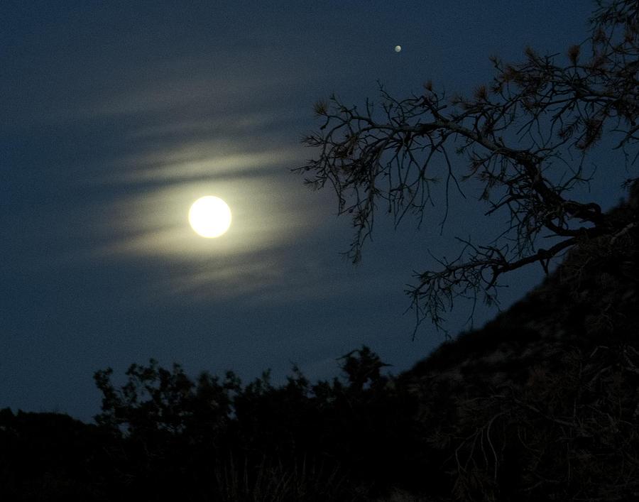 Night In Joshua Tree National Park 1