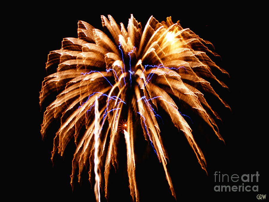 Fireworks Photograph - Night Lights by Gina Welch