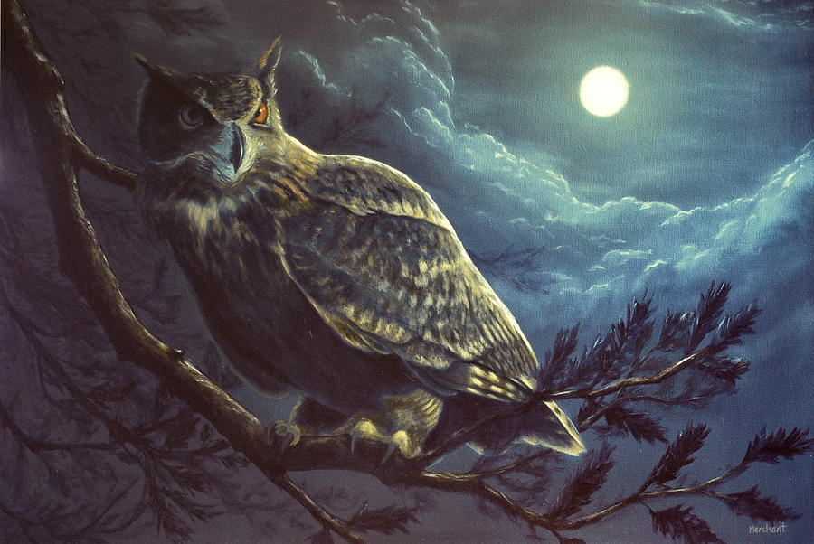 Oil Painting - Night Owl by Linda Merchant